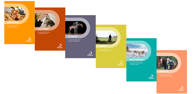 People, Culture and Values - Dechra Pharmaceuticals PLC